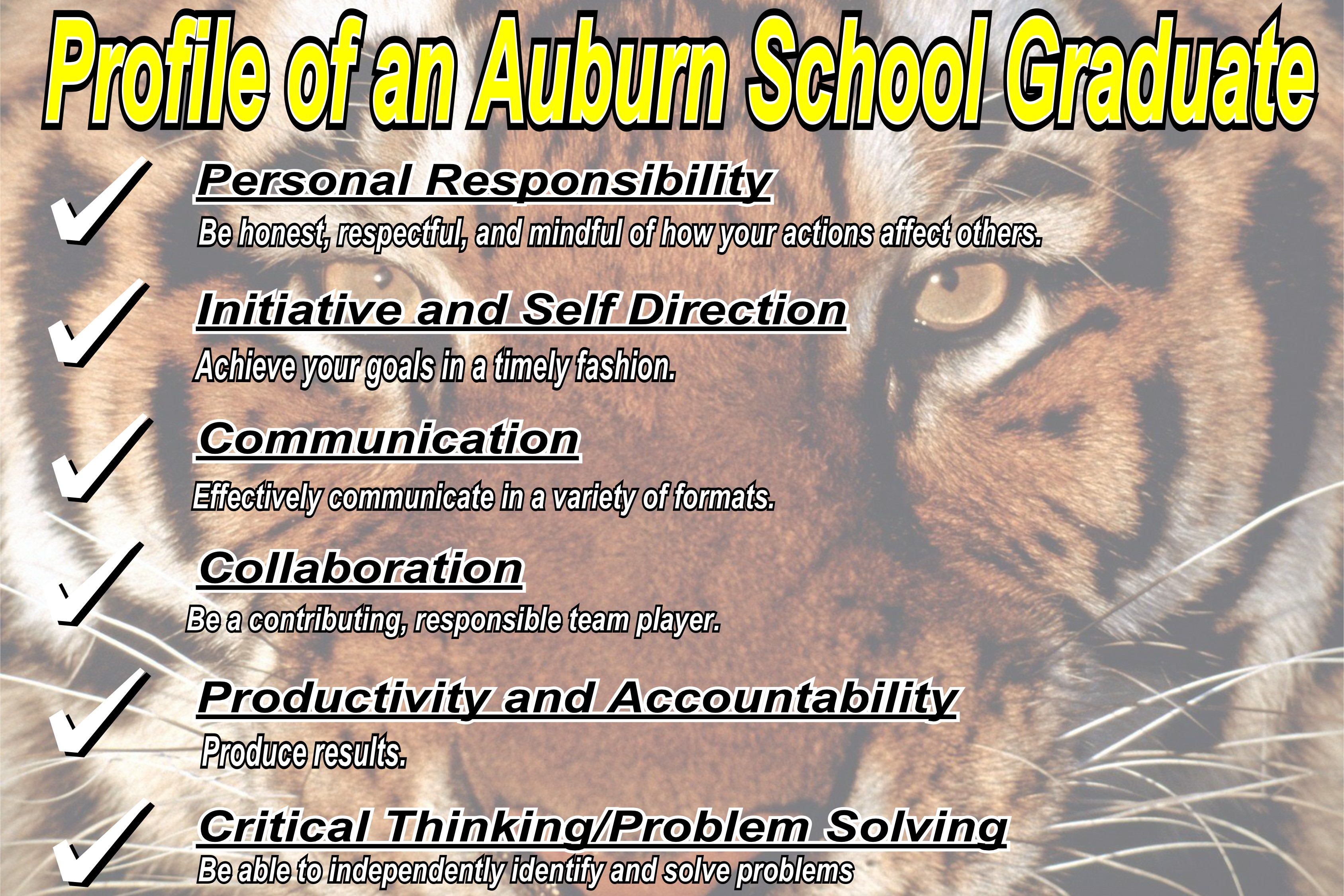 Profile of an Auburn Graduate